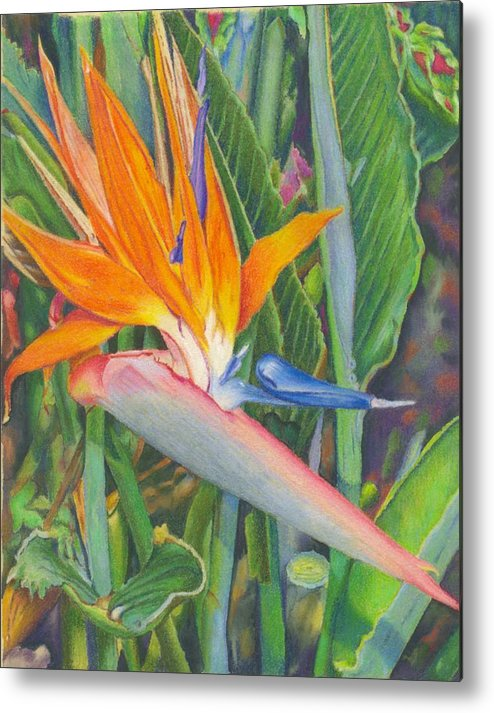 Flower Metal Print featuring the painting Bird O Paradise by Robynne Hardison