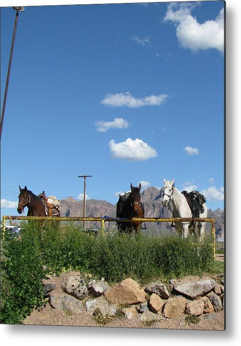 Landscape Metal Print featuring the photograph Blue Sky In Arizona by Gloria Byler
