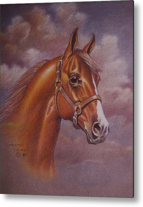 Metal Print featuring the painting Chestnut Quarter Horse by Dorothy Coatsworth