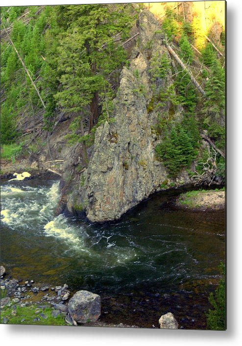Firehole River Metal Print featuring the photograph Fin On The Firehole by Marty Koch