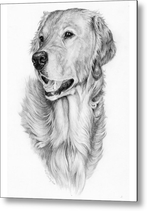 Dog Metal Print featuring the drawing Ginger by Laurie McGinley