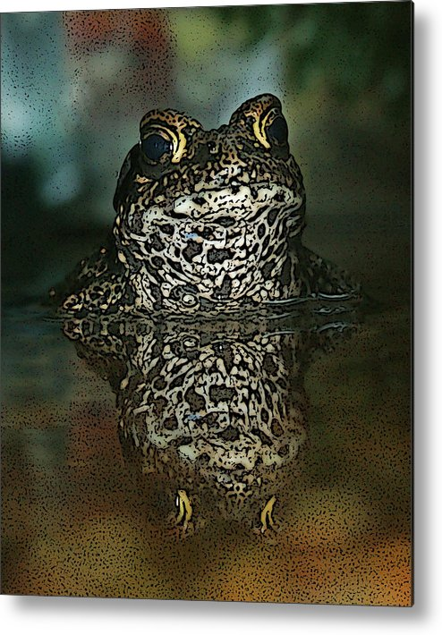 Frog Metal Print featuring the photograph Kiss Me by Ernie Echols