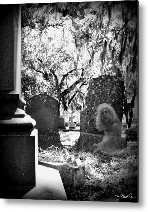 Magnolia Cemetery Metal Print featuring the photograph Magnolia Cemetery 75 by Melissa Wyatt