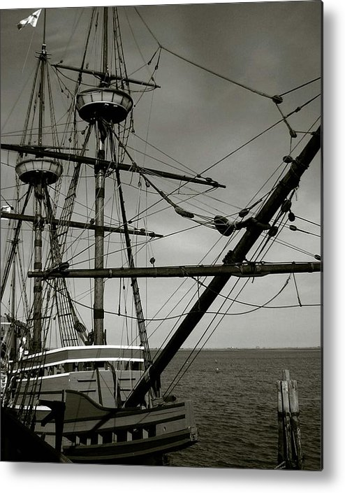 Mayflower Metal Print featuring the photograph Mayflower by Heather Weikel