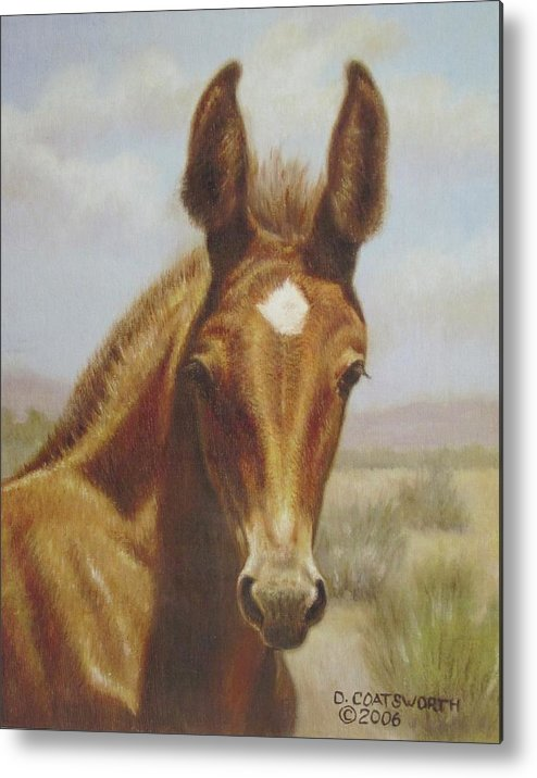 Metal Print featuring the painting Molly Mule Foal by Dorothy Coatsworth