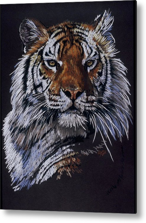 Tiger Metal Print featuring the drawing Nakita by Barbara Keith