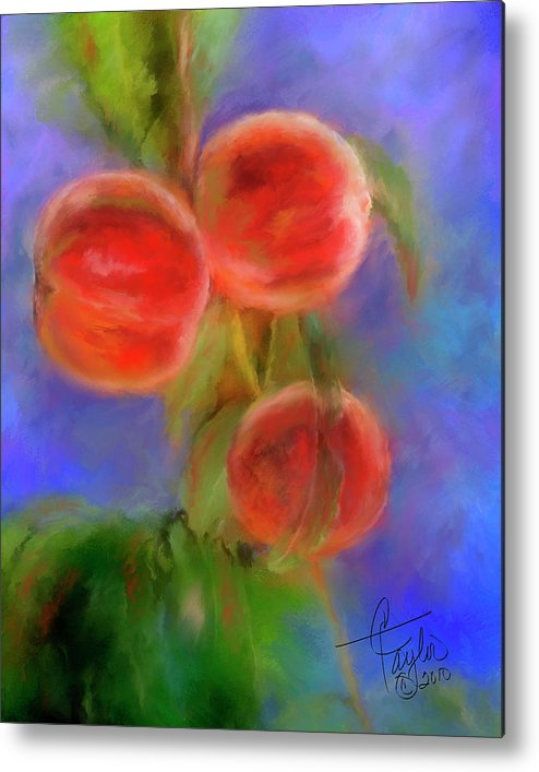 Peaches Metal Print featuring the painting Peachy Keen by Colleen Taylor