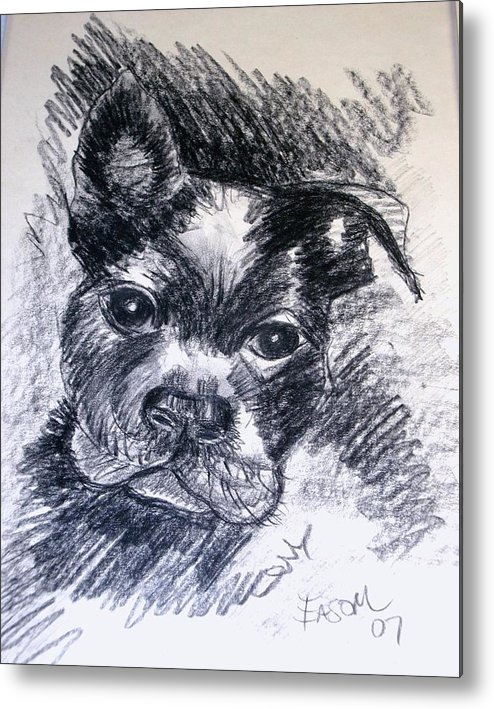 Dog Metal Print featuring the drawing Pepper by Scott Easom