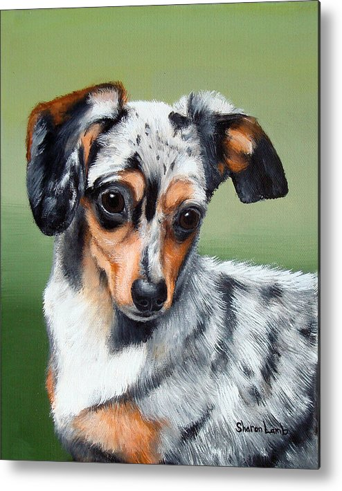Mixed Breed Dog Cat Horse Commissioned Pet Portrait Metal Print featuring the painting Pet Portrait Painting Commission Any Animal by Sharon Lamb