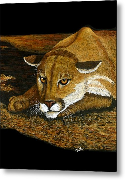 Animal Metal Print featuring the mixed media Ready To Pounce by Lorraine Foster
