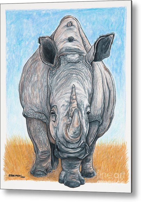 Rhino Metal Print featuring the drawing Roaming Giant by Stephen Taylor