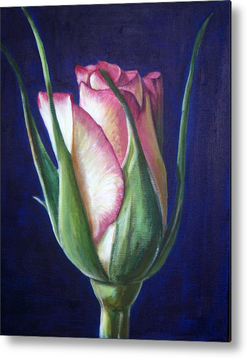 Rose Metal Print featuring the painting Rose Bud by Fiona Jack