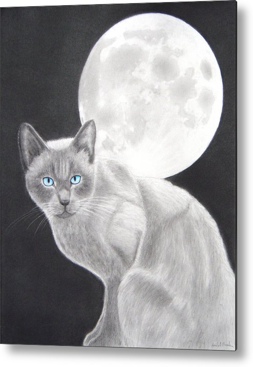 Cat Metal Print featuring the drawing Sasha by Nicole I Hamilton