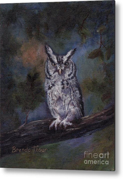 Owl Metal Print featuring the painting Screech Owl by Brenda Thour