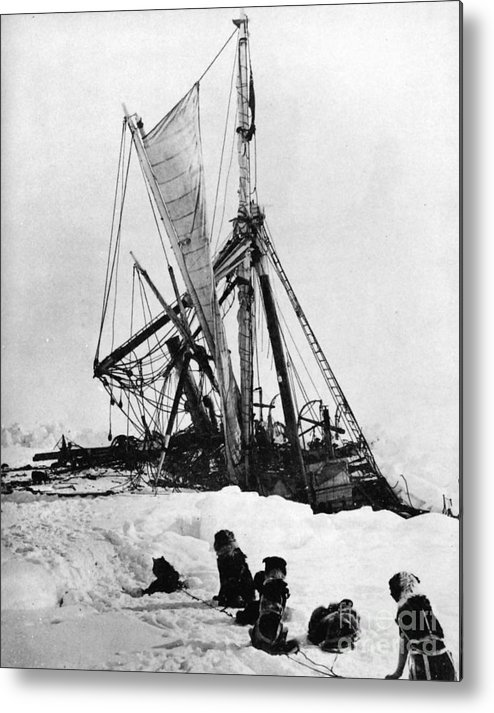 1915 Metal Print featuring the photograph Shackletons Endurance by Granger