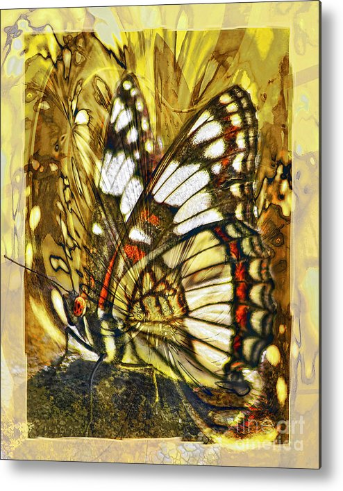 Butterfly Metal Print featuring the digital art Stained Glass Butterfly by Chuck Brittenham