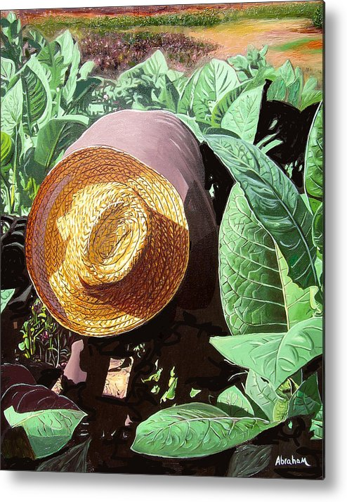 Tobacco Metal Print featuring the painting Tobacco Picker by Jose Manuel Abraham
