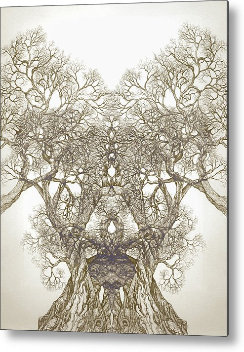 Tree Art Metal Print featuring the digital art Tree 20 Hybrid 1 by Brian Kirchner