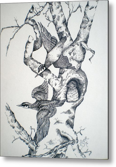 Nature Metal Print featuring the drawing Tree And Birds by Tammera Malicki-Wong