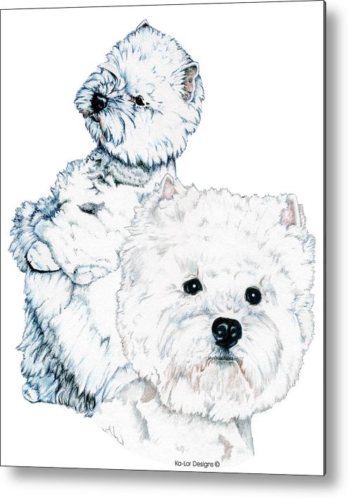 West Highland White Terrier Metal Print featuring the drawing West Highland White Terriers by Kathleen Sepulveda
