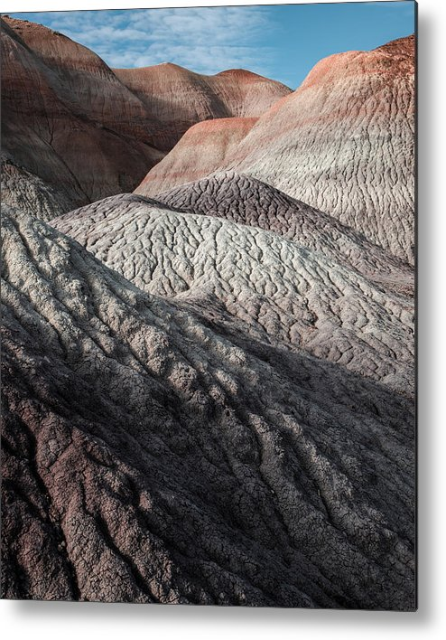 National Park Metal Print featuring the photograph Desert Coral by Joseph Smith
