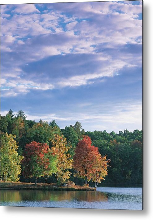 Built Structure Metal Print featuring the photograph Trees In Autumn by Walter Bibikow