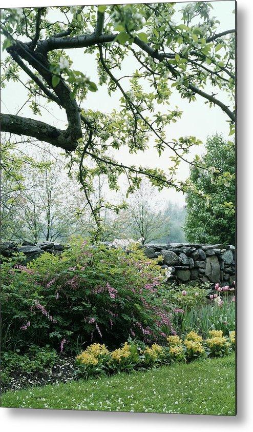 Nobody Metal Print featuring the photograph A Flower Bed In Mrs. Frank Audibert's Garden by Samuel H. Gottscho