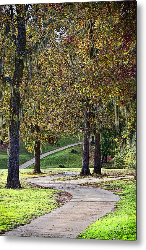 Park Metal Print featuring the photograph A Stroll in the Park by Linda Ebarb