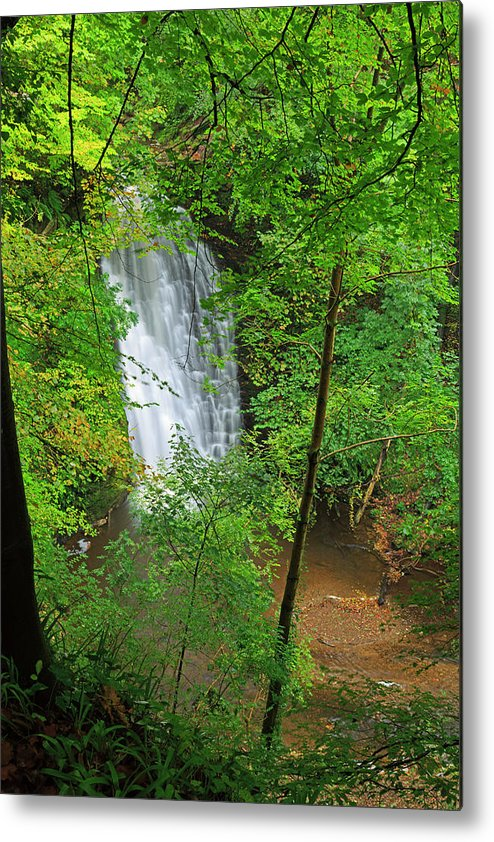 Scenics Metal Print featuring the photograph Falling Foss, North York Moors National by Louise Heusinkveld