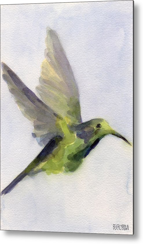 Bird Metal Print featuring the painting Hummingbird Watercolor Bird Painting by Beverly Brown