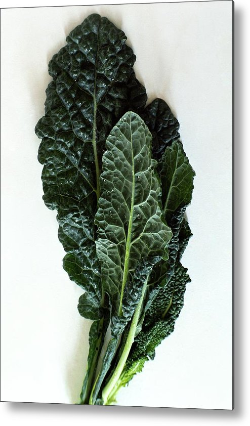 Food Metal Print featuring the photograph Lacinato Kale by Romulo Yanes