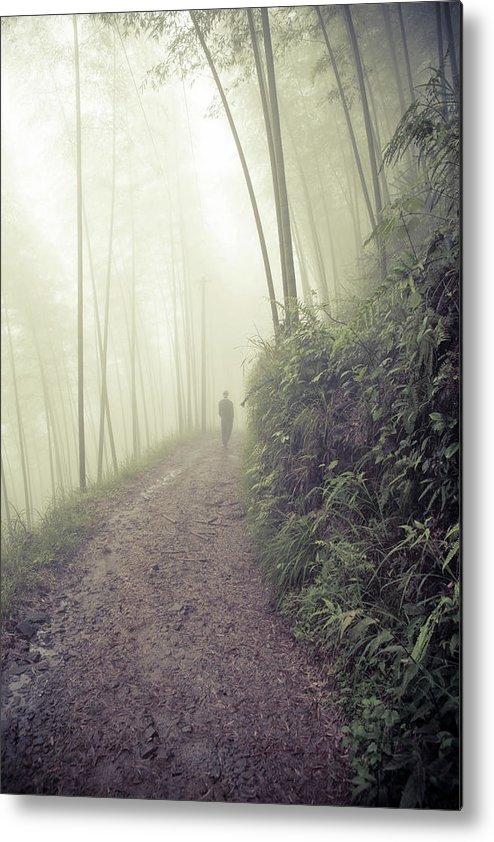 Man Walking In Foggy Forest Metal Print By Fzant