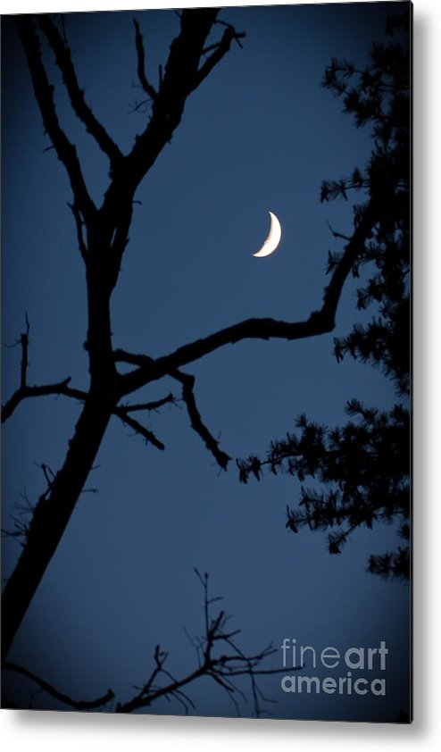 Moon Metal Print featuring the photograph Moon by Wayne Valler