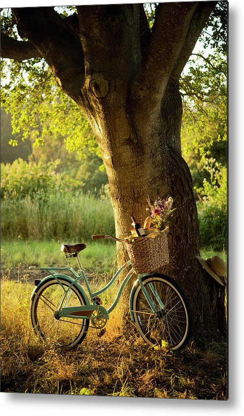 Grass Metal Print featuring the photograph Retro Bicycle With Red Wine In Picnic by Nightanddayimages