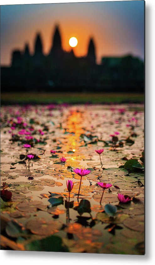 Tranquility Metal Print featuring the photograph Sunrise Over The Lotus Flowers Of by © Francois Marclay