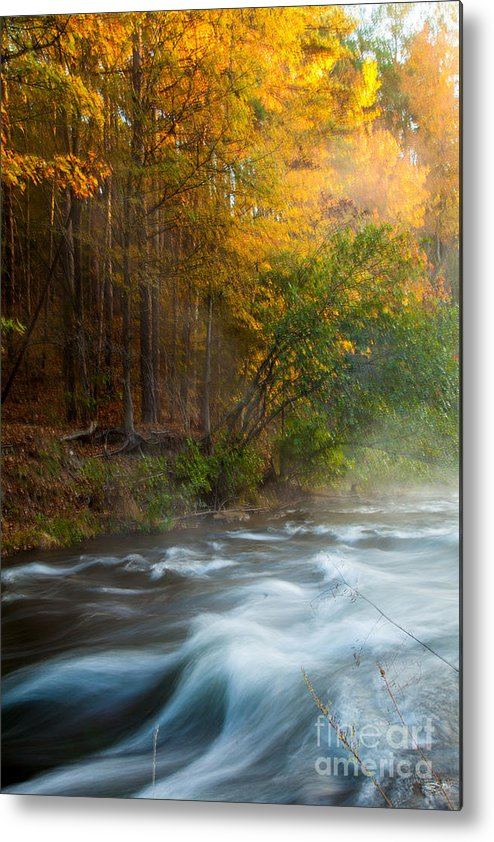 Landscape Metal Print featuring the photograph Tranquil Morning by Iris Greenwell