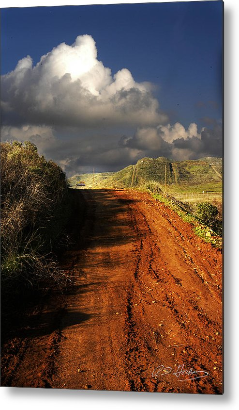 Landscape Metal Print featuring the photograph Noble Road by Richard Gordon