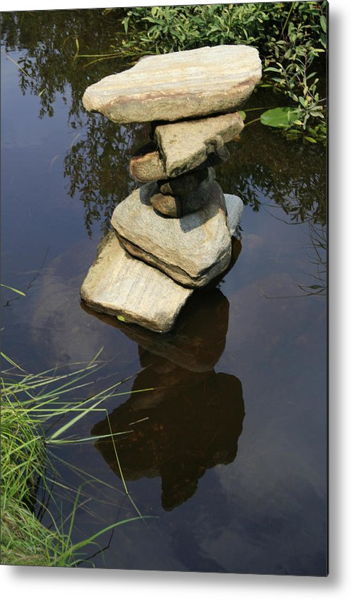 Nature Metal Print featuring the photograph Above and Below by Alan Rutherford