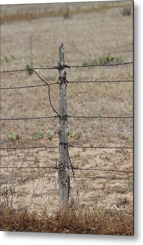 Roadside Metal Print featuring the photograph Barbwire and Old Wood Fence Post by Colleen Cornelius