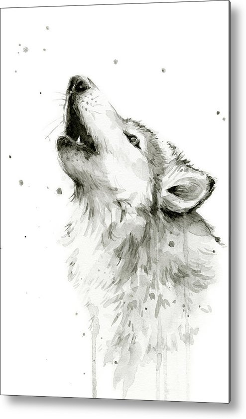 Watercolor Metal Print featuring the painting Howling Wolf Watercolor by Olga Shvartsur