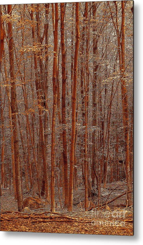 Berry Metal Print featuring the drawing I was lost but now I am found by Diane E Berry
