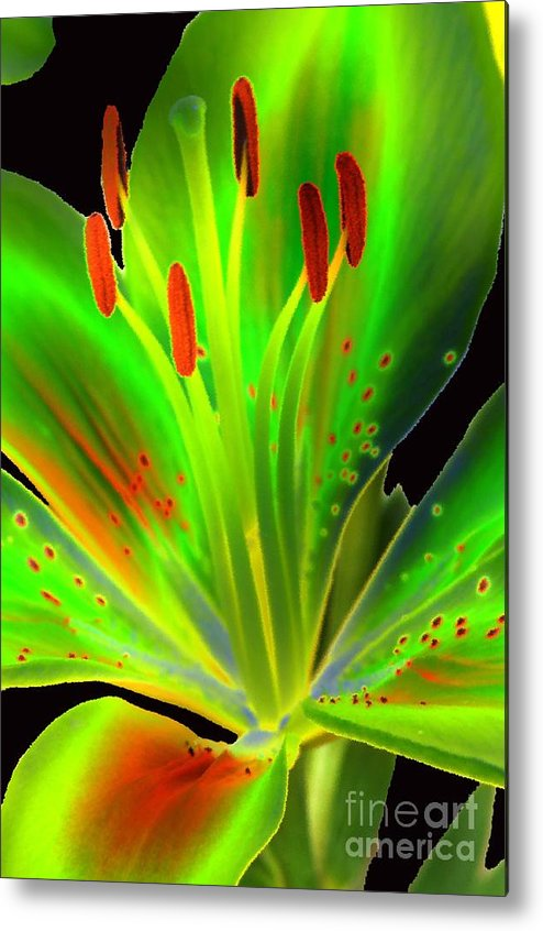 Diane Berry Metal Print featuring the photograph Lime Twist by Diane E Berry