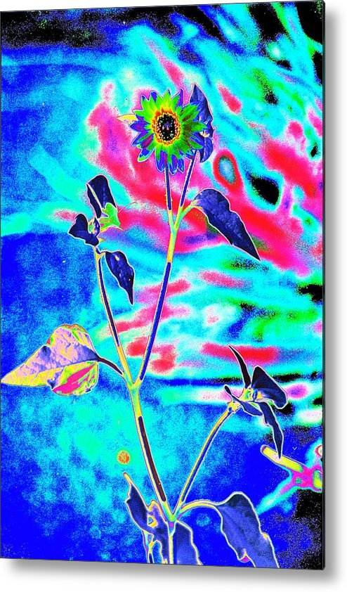 Psychedelicized Daisy Metal Print featuring the photograph Psycho Daisy by Richard Henne