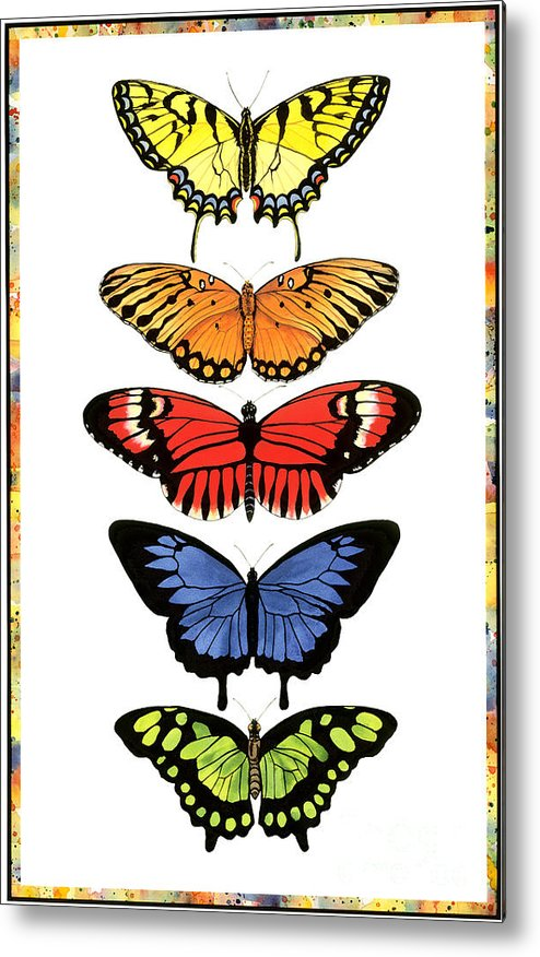 Butterflies Metal Print featuring the painting Rainbow Butterflies by Lucy Arnold