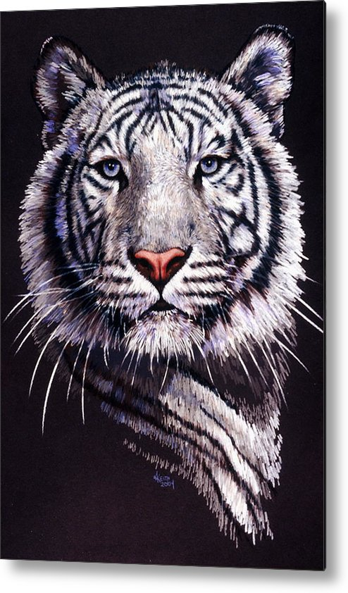 Tiger Metal Print featuring the drawing Sorcerer by Barbara Keith