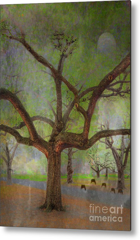 Travel Metal Print featuring the photograph Under The Live Oak by Larry Braun