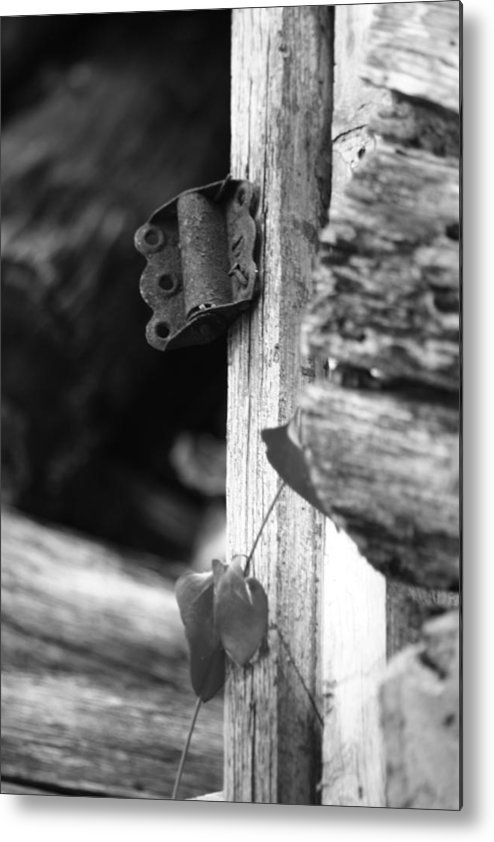 Ansel Adams Metal Print featuring the photograph Winslow cabin door detail by Curtis J Neeley Jr