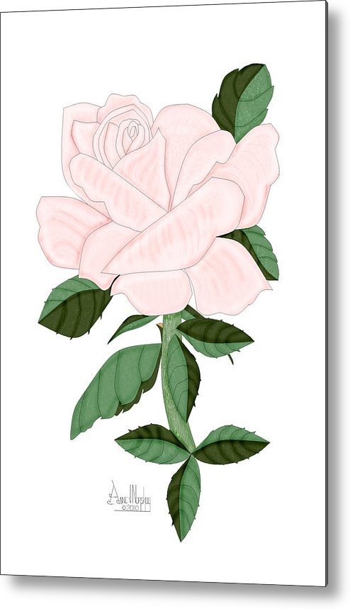 Pink Rose Metal Print featuring the painting Winter Blush Rose by Anne Norskog