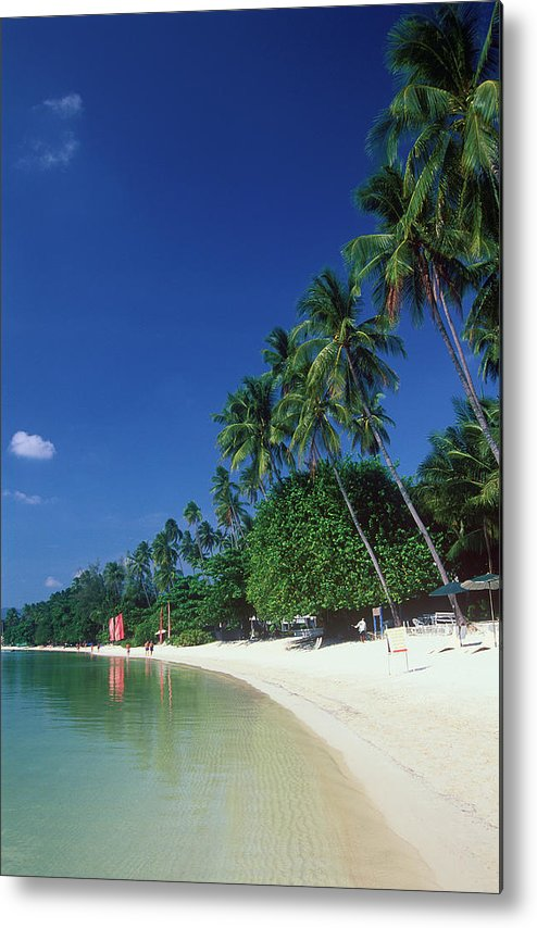 Water's Edge Metal Print featuring the photograph Palm Trees At Sandy Chaweng Beach by Otto Stadler