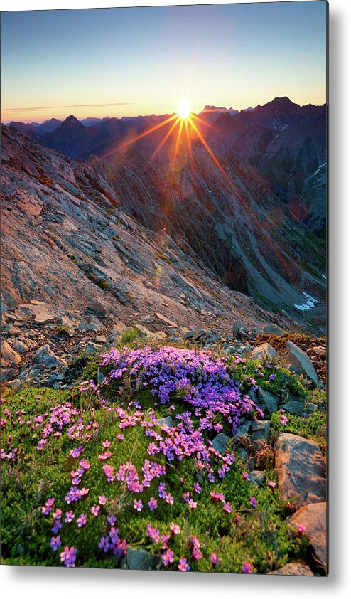 Scenics Metal Print featuring the photograph Alpine Sunrise With Flowers In The by Wingmar